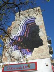 Mural Dziura wcałym przy Mackiewicza 1