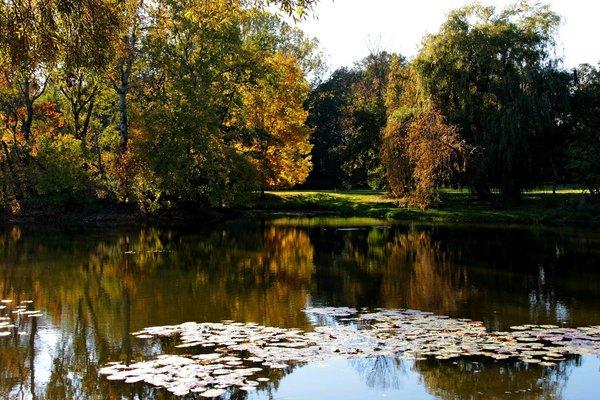 Jesienne kolory z Parku Skaryszewskiego