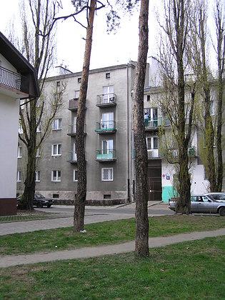 Praskie sosenki z ul. Dobrowoja
