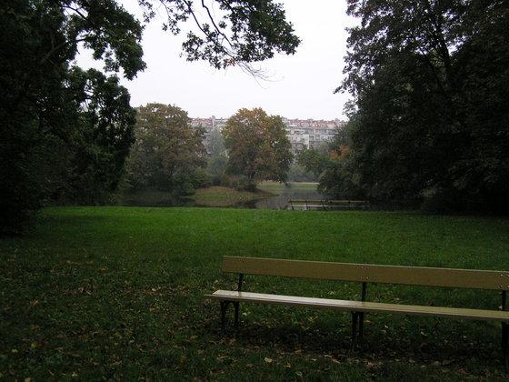 Spacer ornitologiczny po parku Skaryszewskim