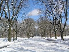 Park Skaryszewski zimą
