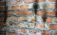 Piwnica przy Strzeleckiej 8, fot. Urząd Ochrony Zabytków