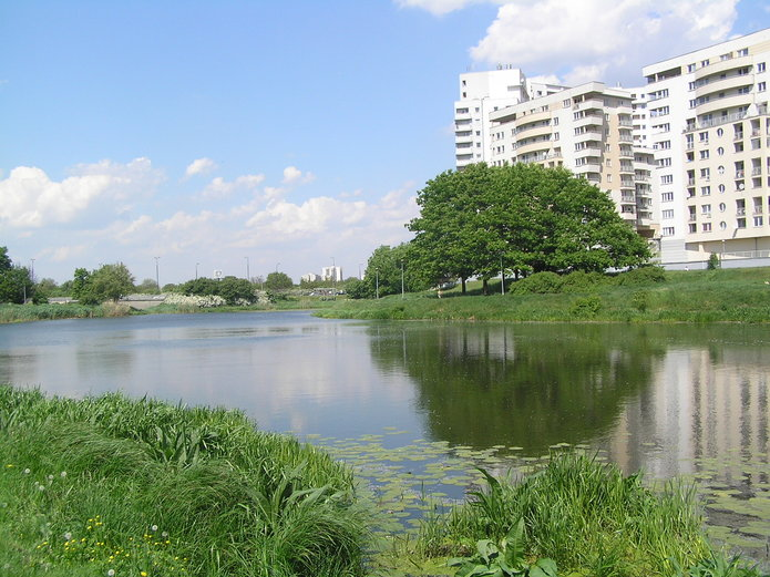Jeziorko Gocławskie, fot. Twoja Praga