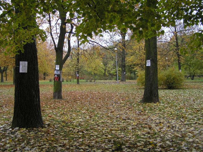 Park na Szmulowiźnie