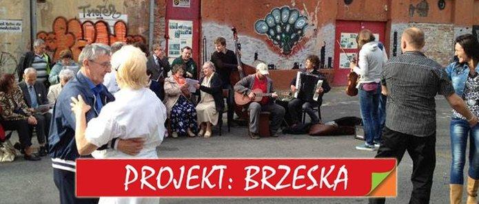 Projekt Brzeska