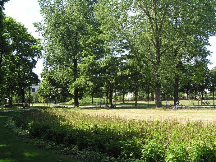 Park Znicza na Grochowie zmieni nazwę?