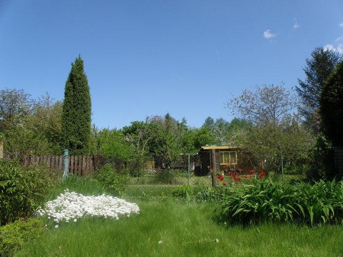 Ogródki działkowe wWarszawie