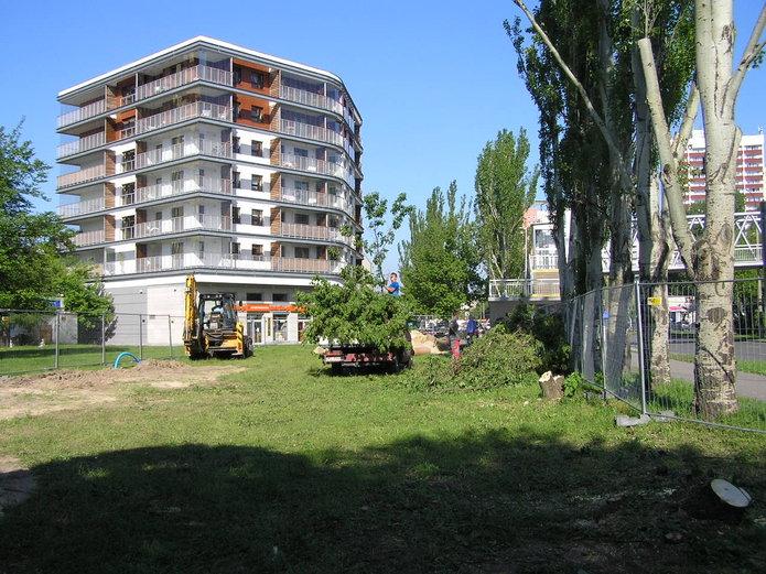 Trwa wycinka drzew pod budowę myjni samochowej