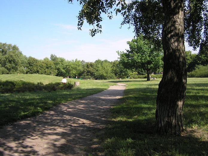 Ogłoszono przetarg na rewitalizacje parku Polińskiego