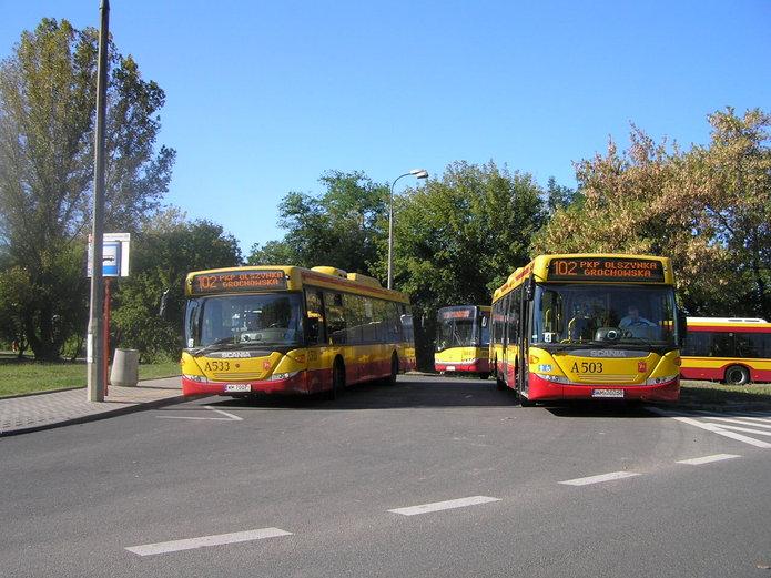 Autobusy linii 102 na pętli Olszynka Grochowska