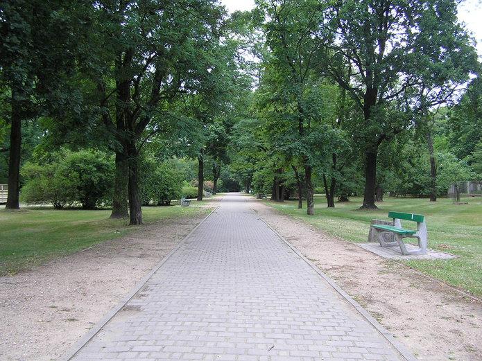 Aleja wParku Leśnika na Grochowie
