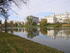 Widok na jeziorko Kamionkowskie