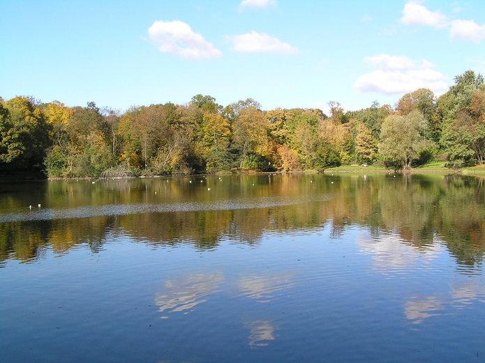 Jeziorko wparku Skaryszewskim