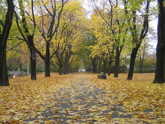 Park Praski jesienią