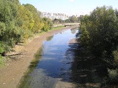 Kanał Portu Praskiego