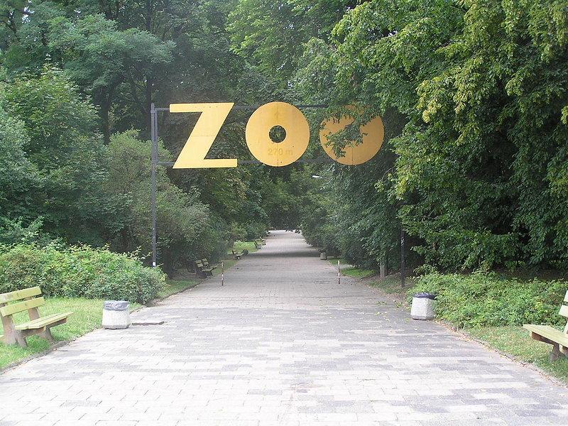 Ogród zoologiczny P8230309