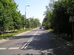 Ulica Żupnicza